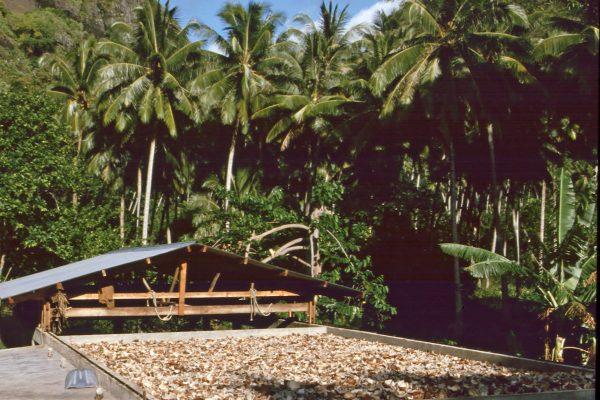 Marquesas Fatu Hiva 8