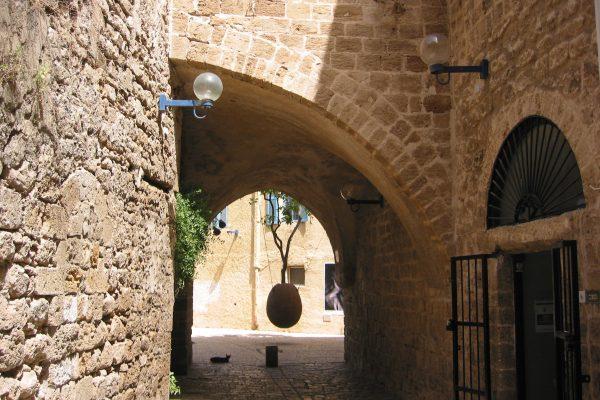 Jaffa-054