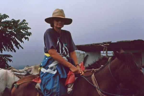 Pazifik Galapagos Isabela zum Vulkan Sybille zu Pferde