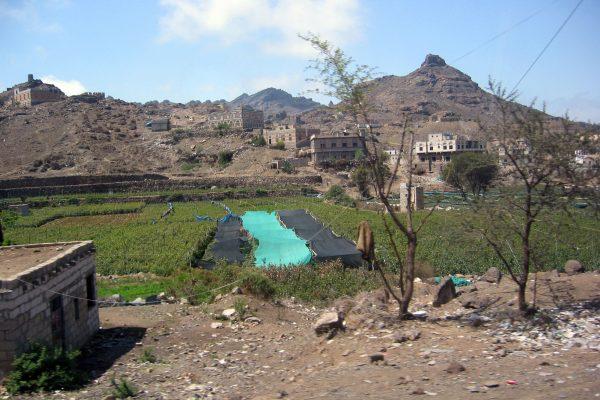 Sana'a-013