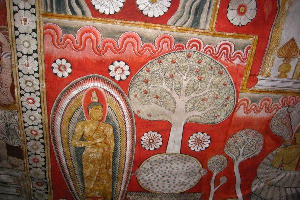 Sri-Lanka--Dambulla-11