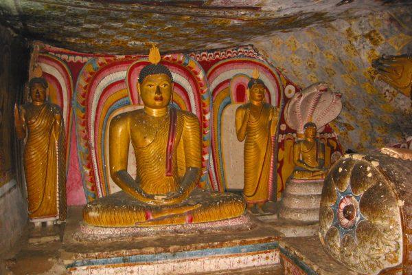 Sri-Lanka--Dambulla-21