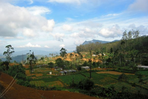 Sri Lanka  Eisenbahn Fahrt 10