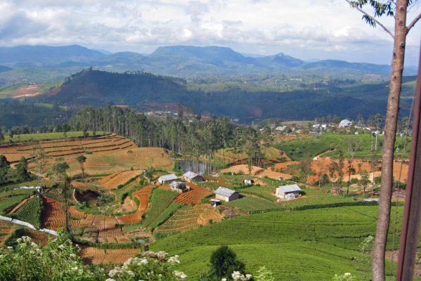 Sri Lanka  Eisenbahn Fahrt 13