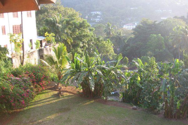 Sri-Lanka--Kandy-15