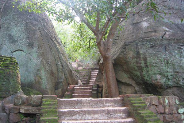 Sri-Lanka--Sigiriya-21
