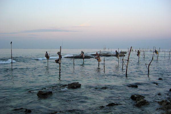 Sri Lanka/  Stelzenfischer