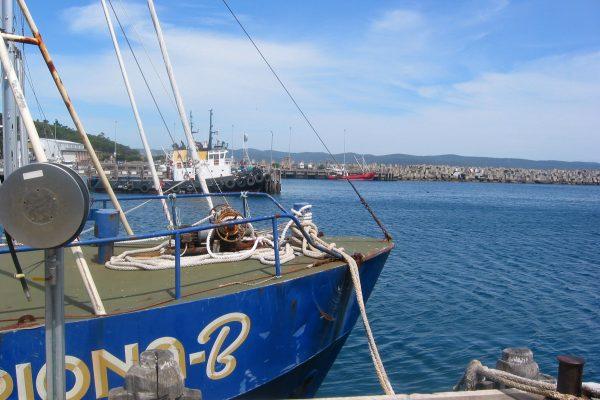 Eden Harbour