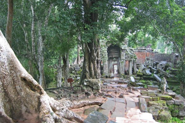 Kambodscha-Anchor-060