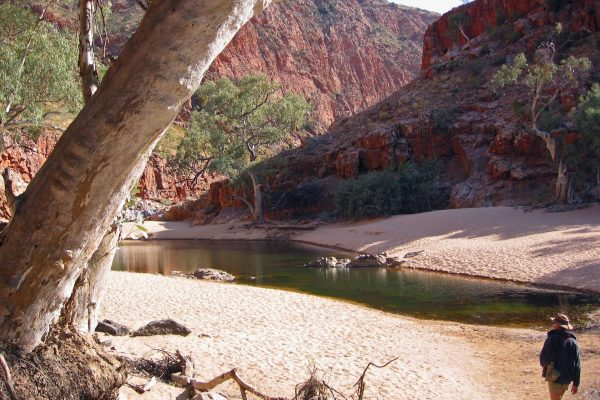 MacDonnell-Ranges-013