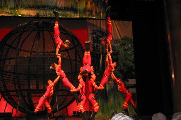 Shanghai-088-Akrobatische-S