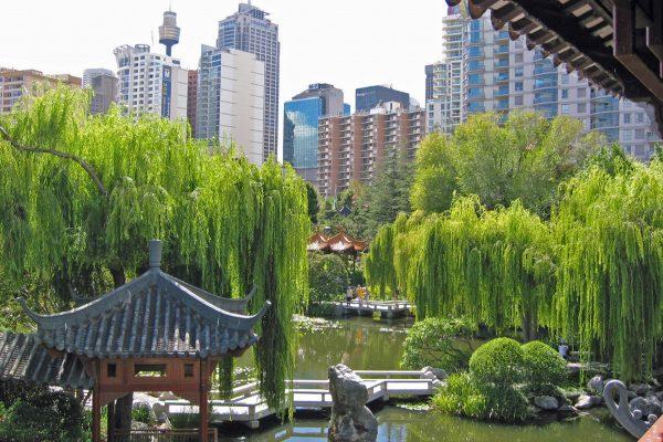 Sydney-Chin.-Garden-1