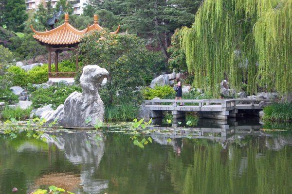 Sydney-Chin.-Garden-2