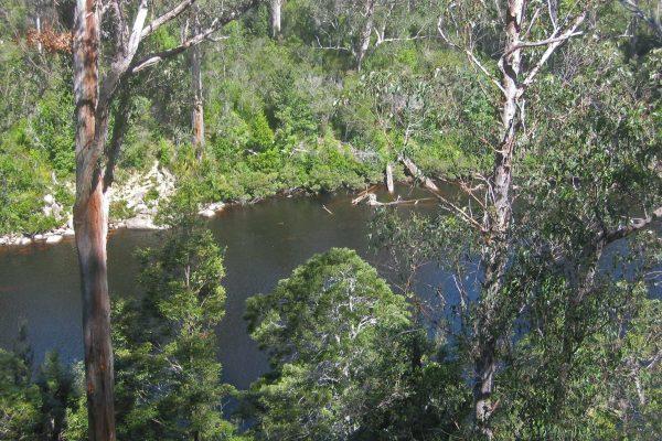 Tasmanien_SW_National_Park_