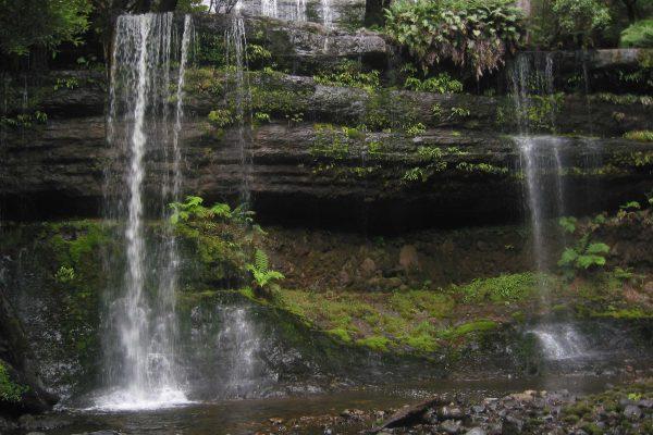 Tasmanien_SW_Nationalpark17