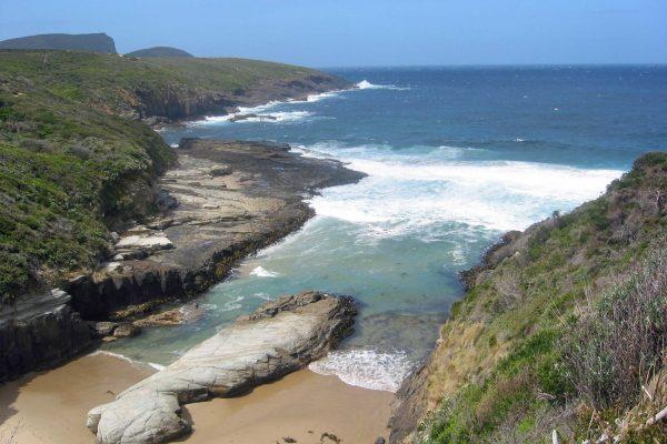 Tasmanien_SW_Nationalpark_2