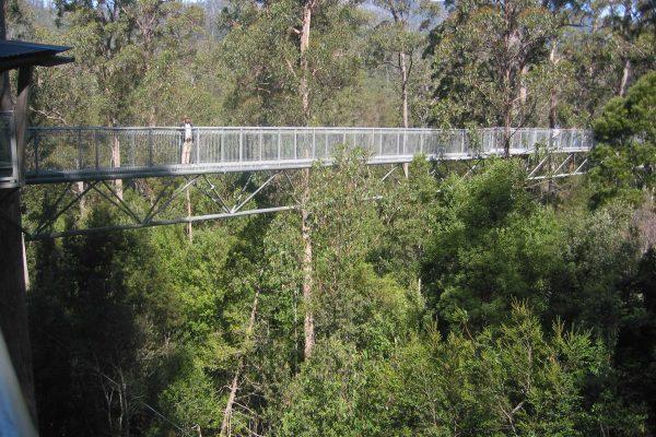 Tasmanien_Suedwest_National