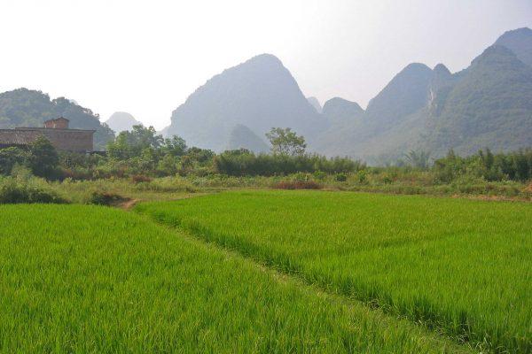 Yangshuo-004